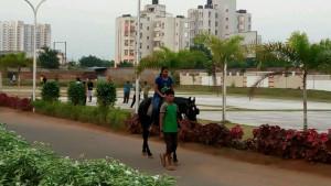 riding-6